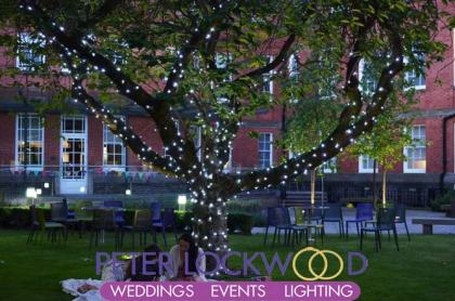 bright white tree fairy lights