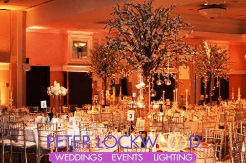 Event and Wedding Venue UpLighting