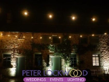 festoon and building lighting