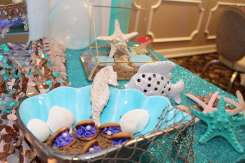 Little Mermaid Theme Birthday Party Decoration 3