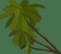 clippalm_trees_gregoir_03.svg.med
