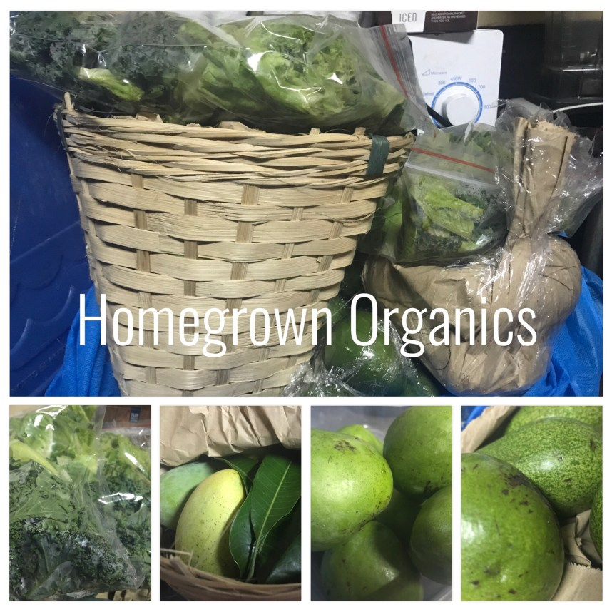 Where to Get Fresh Produce Online: Homegrown Organics | Stitches & Words http://verabear.net