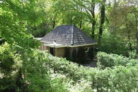 vakantiehuis te huur Overijssel