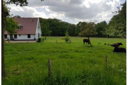 alleen op vakantie in Twente
