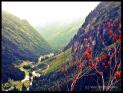 Bergwandern, Sulzenauhütte, Blick ins Tal, Landschaft, Natur