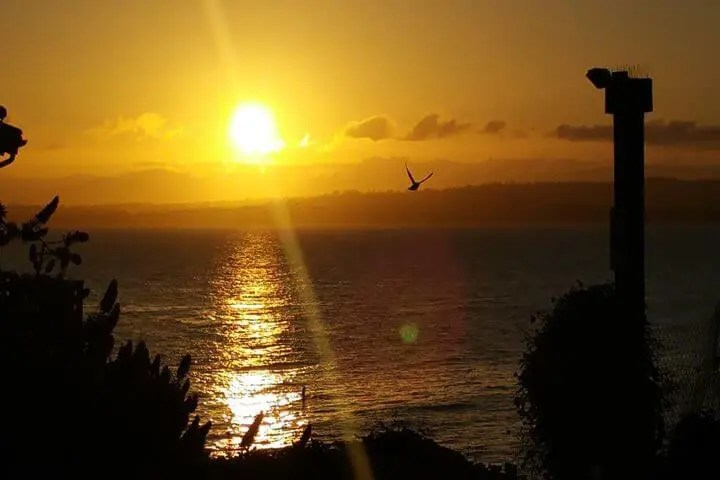 Morning in Monterey, California: Stunning Sunrise, Steinbeck Monument, and Cannery Row