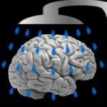 Brainwashing – Learn How Its Done So You Can Undo It