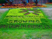 Bournemouth garden