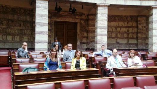 Serbian study visit to the Hellenic Parliament, Prodirekt