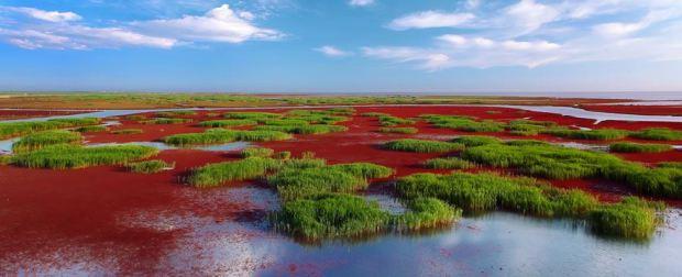 Red Beach in Panjin