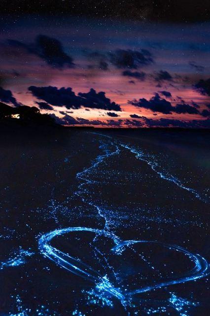 Sea of Stars on Vaadhoo Island, Maldives