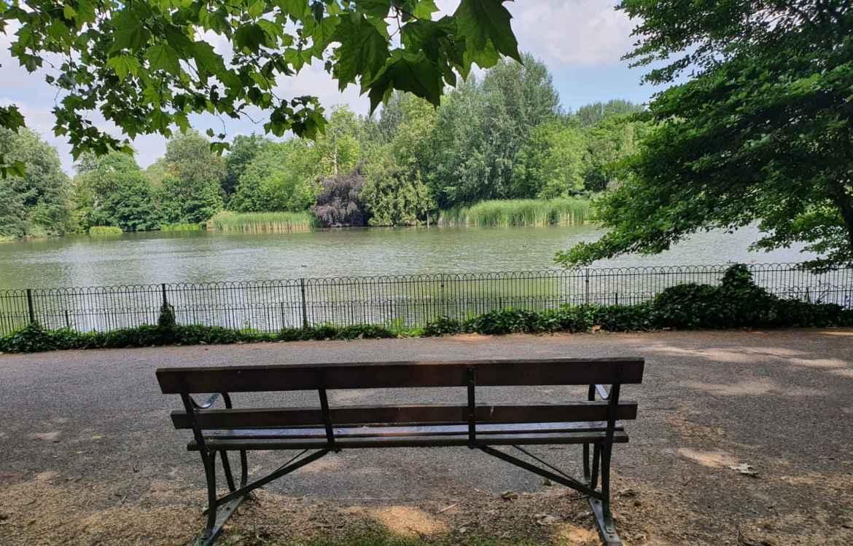 Park Bench Battersea