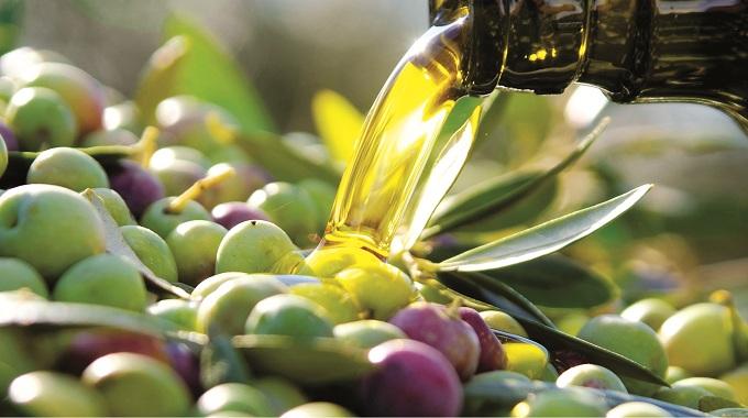 aceite-de-oliva-01