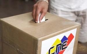19-(2)-Proceso-electoral,-parlamentarias-(AVN)-(2)-WEB