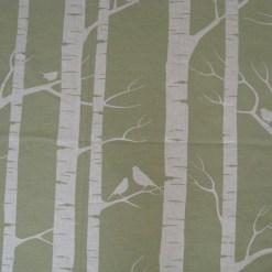 Birch in Moss on Cream