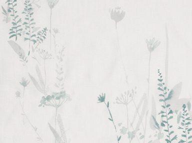 Wild Flower   Dusky Blue