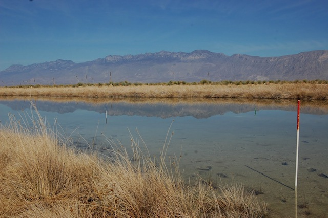 Laguna Churince. Foto del blog de Valeria Souza