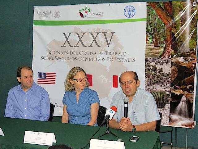 Los expertos en cambio climático y bosques Dr. Brad StClaire del USDA Forest Service, la Dra. Sally Aitken de la University British Columbia y el Dr. Cuauhtémoc Sáenz de la Universidad Michoacana de San Nicolás de Hidalgo, Morelia, en rueda de prensa en la Conafor. Imagen: Conafor