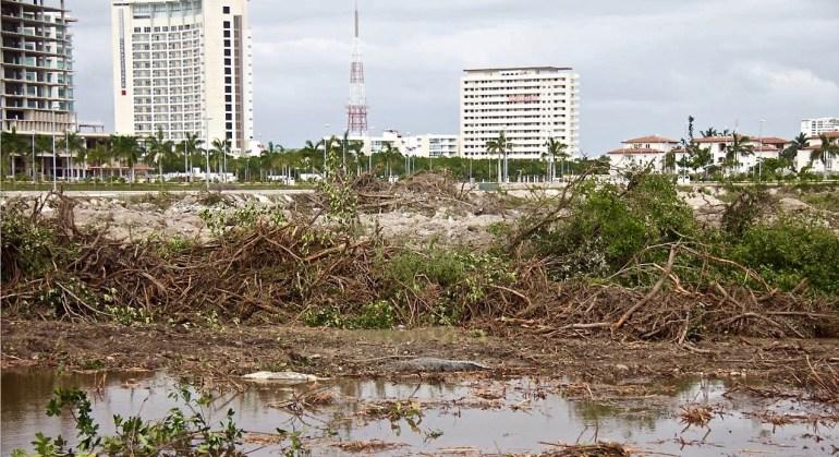 Devastación ambiental de mangle en Cancún por parte de Fonatur