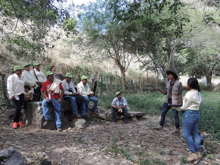 Doctorantes en la Sierra de Manantlán en el proyecto de investigación sobre la nutria