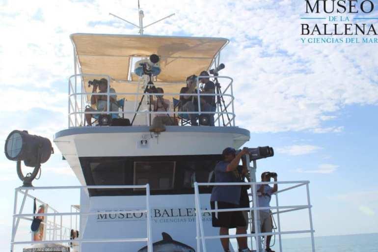 Expedición para la búsqueda de vaquita marina. Foto: Museo de la Ballena