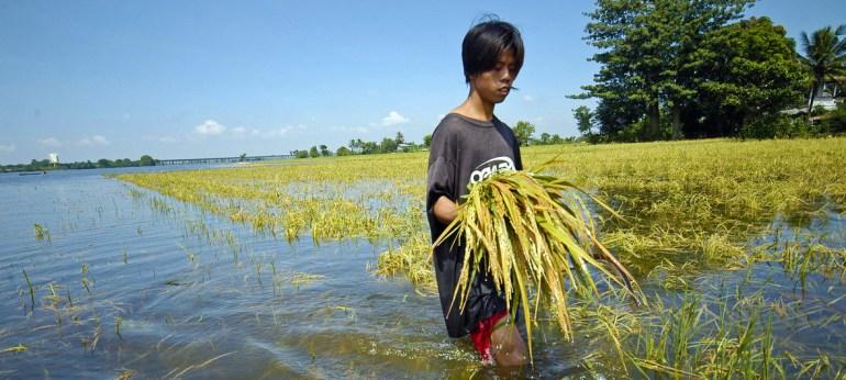 Banco Mundial/Nonie Reyes Edit Un agricultor en Filipinas revisa sus cultivos después de una inundación. El cambio climático traerá más fenómenos como este.