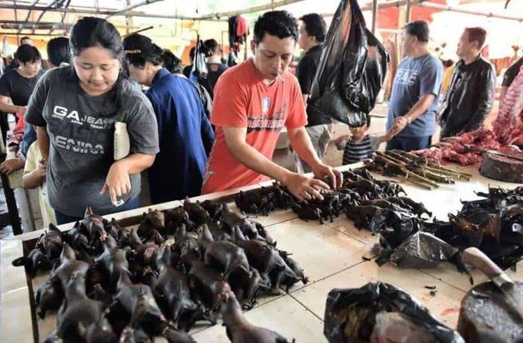 Venta de murciélagos en China