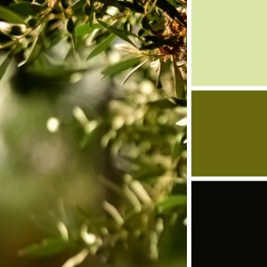 verde oliva y verde militar