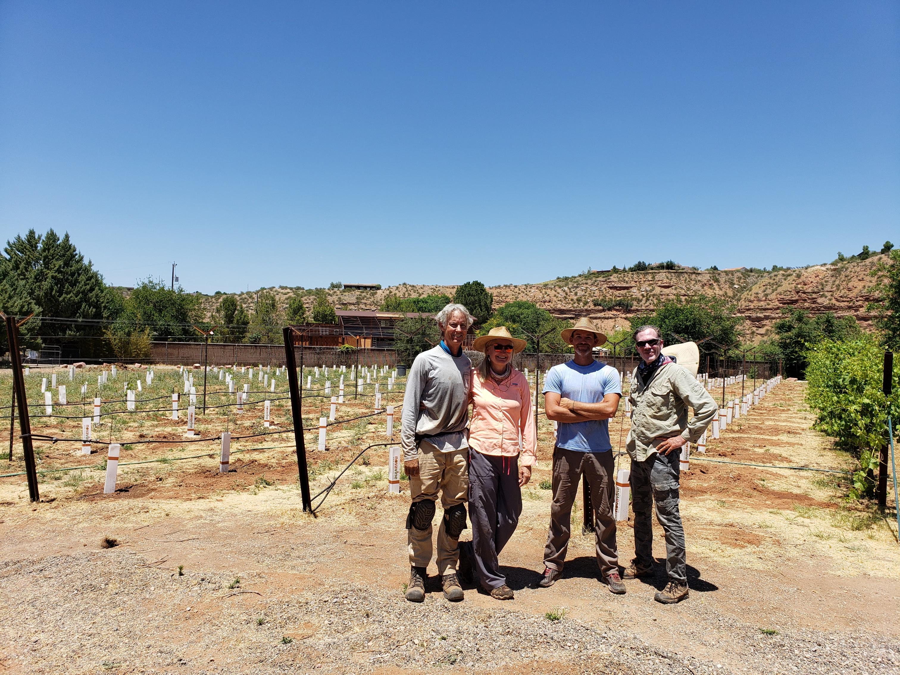 Vineyard Crew