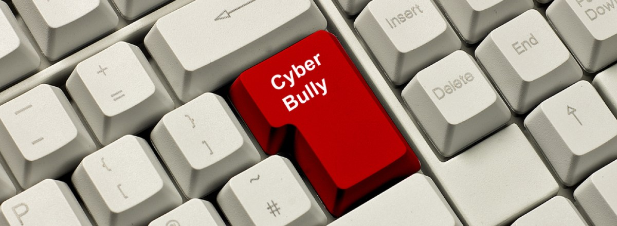 "How to Better Fight Cyberbullying: <span class=""subtitle"">Finding Fixes for the Internet Protection Act</span>"