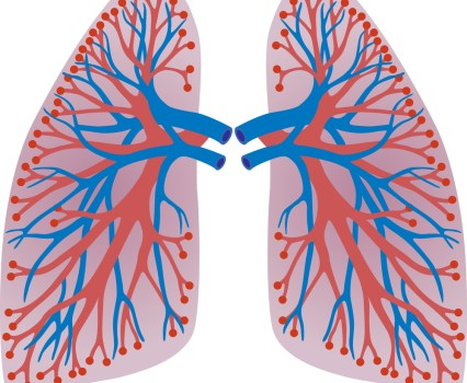Doctors and Lawyers and Such: A Pediatric Lung Transplant Case Illustrates the Complex Relationship Between the Government and Medical Providers