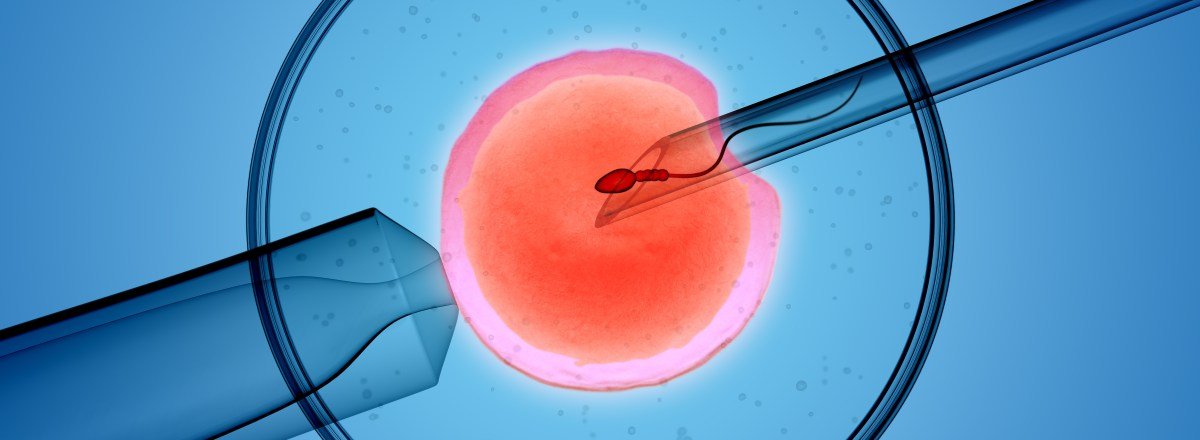Friends with Benefits: Texas Man Who Donated Sperm to a Friend Has Parental Rights