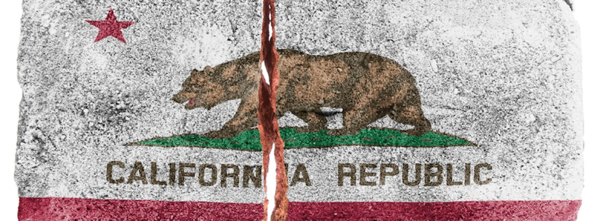 """What California Voters Should Focus on When Voting on Tim Draper's """"CAL 3"""" Initiative"""