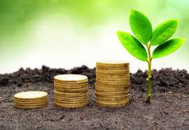Vijf tips om veilig te beleggen