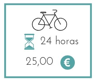 ALquilar bicicleta mountain bike