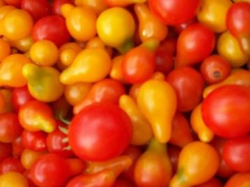 tomate-bombilla-roja