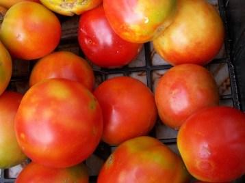 tomate-pera-8