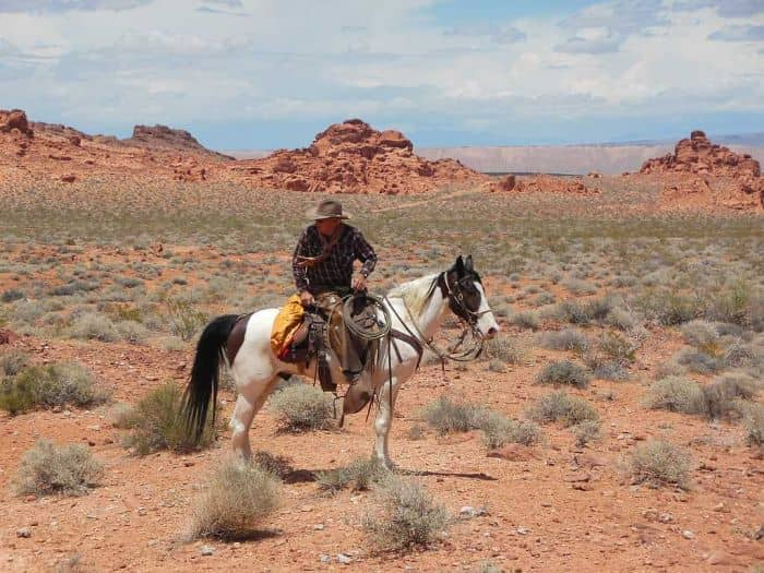 Cowboy in Valley of Fire – Fotoverhaal