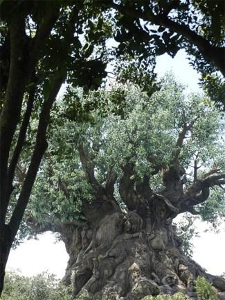 Louise En Jan-Willem Logtmeyer- Tree of life