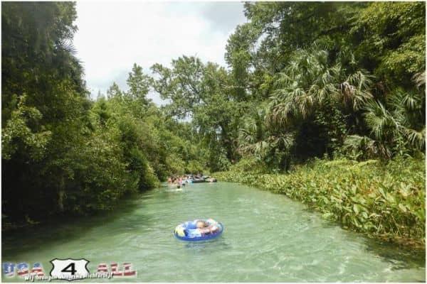 Kelly park – Florida – Heerlijk zwemmen in natuurlijk water!