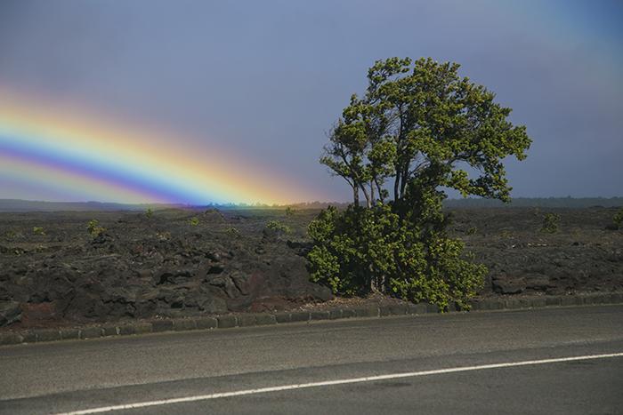 Volcanoes National Park Lava Veld