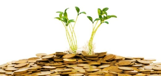 Investeren, global investment, investeerders