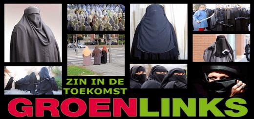 heropvoeding, GroenLinks