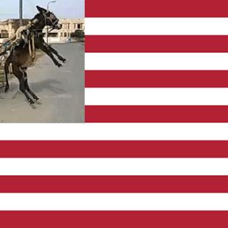 USA2020