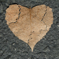 heart-742712_1280_b