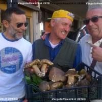 Appennino bolognese, in vendita i tesserini per i funghi: norme da rispettare e consigli per la raccolta