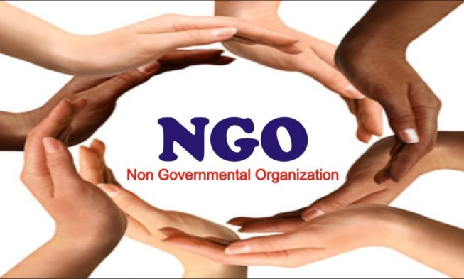 2020 Budget: Ngo Decries Poor Allocation For Agriculture