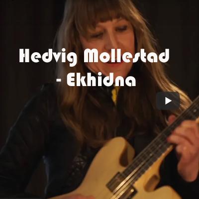 Hedvig Mollestad Ekhidna