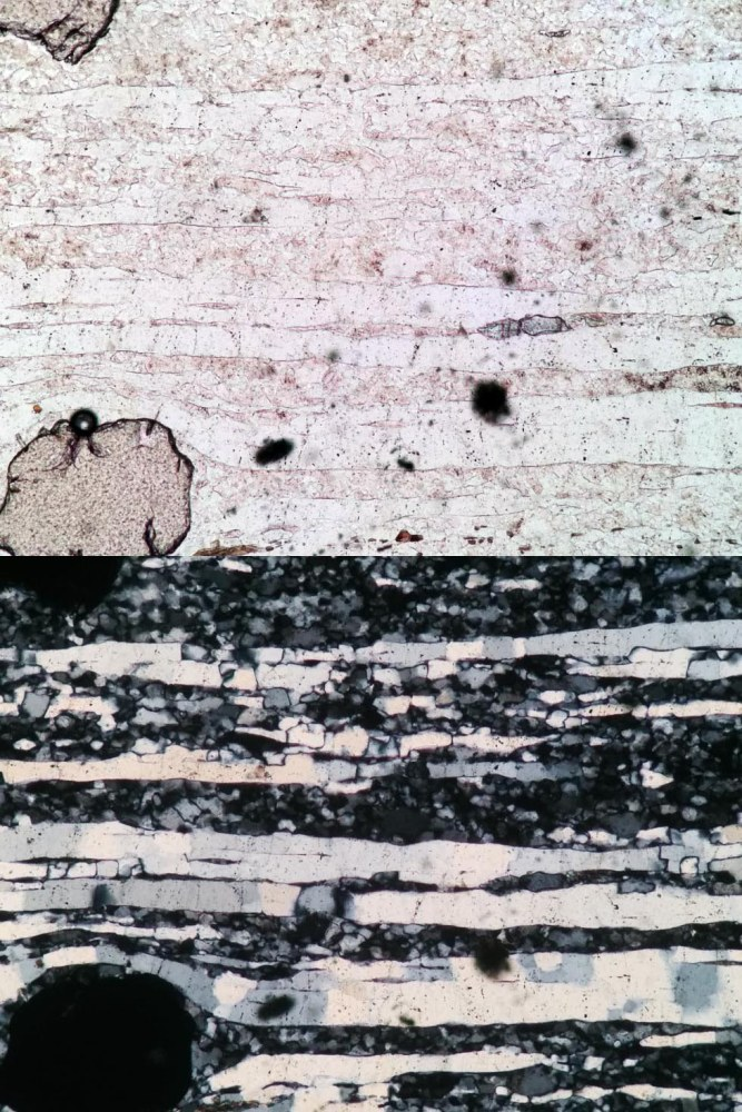 #ThinSectionThursday 6: Hit-and-run (4/6)