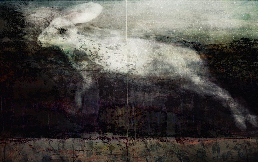 The Dingo's Noctuary (Judith Nangala Crispin)